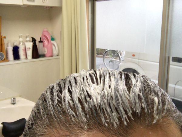 白髪染めをたっぷり塗った髪の毛